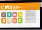 CMS Webデザイン